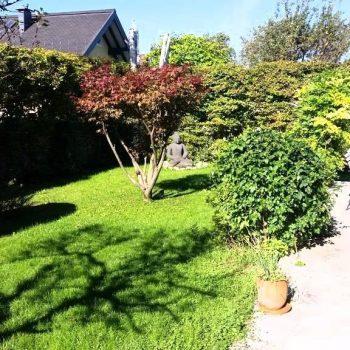 1_Garten mit Terrasse